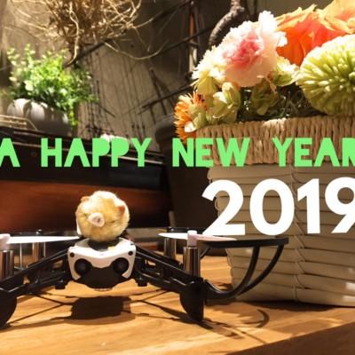 お正月からテレビでドローン特集!2019年の初ニュースを紹介します☆