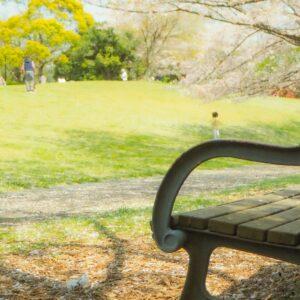 ドローンを持ってピクニックに行こう!ソロピクニックでも楽しめる♪