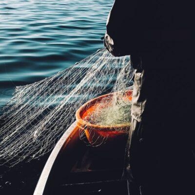 高校生がドローンで漁!?「もじゃこ漁」の効率化!