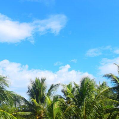 ドローンを知って2021年の夏至に海やイベントを楽しもう!
